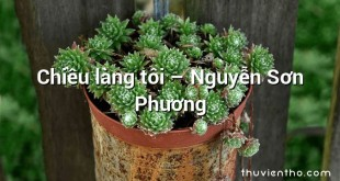Chiều làng tôi – Nguyễn Sơn Phương