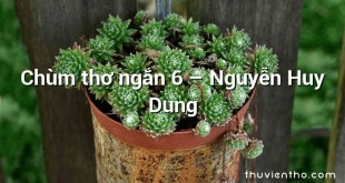 Chùm thơ ngắn 6 – Nguyễn Huy Dung