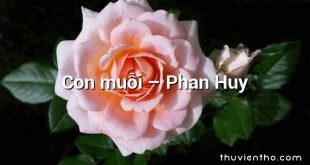 Con muỗi – Phan Huy
