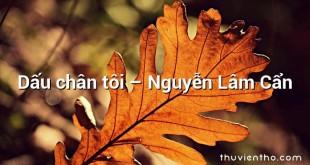 Dấu chân tôi – Nguyễn Lâm Cẩn