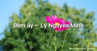 Đêm ấy – Lý Nguyễn Minh