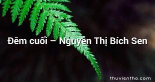 Đêm cuối – Nguyễn Thị Bích Sen
