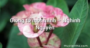 Giông tố một mình – Nghinh Nguyễn