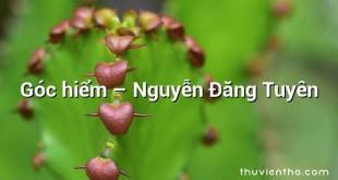 Góc hiểm – Nguyễn Đăng Tuyên
