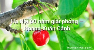 Hà Nội 60 năm giải phóng – Hoàng Xuân Cảnh