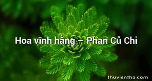Hoa vĩnh hằng – Phan Củ Chi