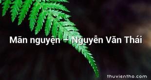 Mãn nguyện – Nguyễn Văn Thái