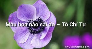 Màu hoa nào cài áo – Tô Chí Tự