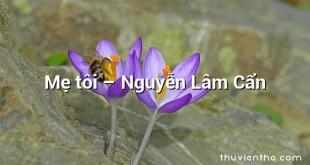 Mẹ tôi – Nguyễn Lâm Cẩn