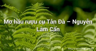Mơ hầu rượu cụ Tản Đà – Nguyễn Lâm Cẩn