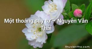 Một thoáng suy tư – Nguyễn Văn Thái