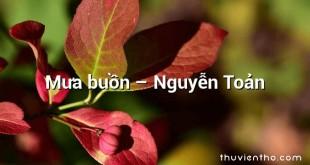 Mưa buồn – Nguyễn Toản