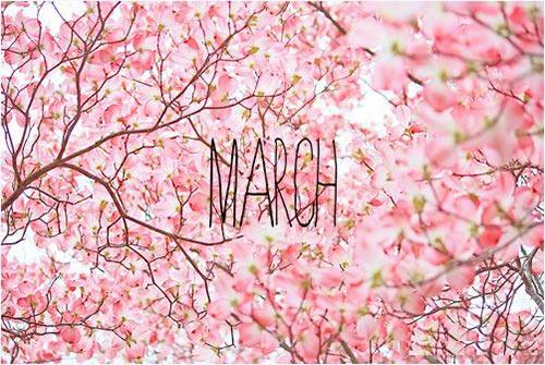 nhung bai tho ngan hay thang 3 chon loc hay nhat - Những bài thơ ngắn hay tháng 3 chọn lọc hay nhất