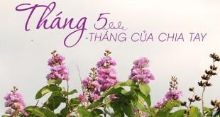 nhung bai tho ngan hay thang 5 tuyen chon 310x165 - Những bài thơ ngắn hay tháng 5 tuyển chọn