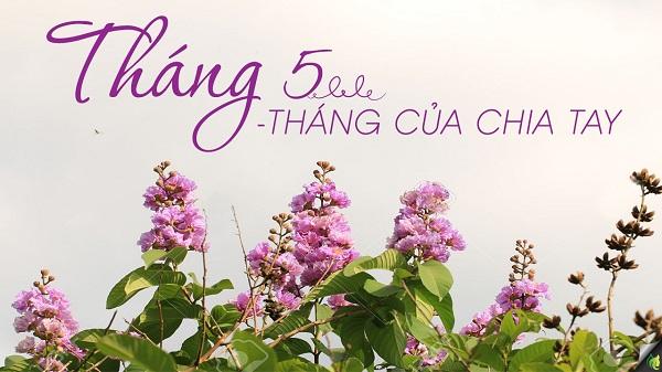 nhung bai tho ngan hay thang 5 tuyen chon - Những bài thơ ngắn hay tháng 5 tuyển chọn