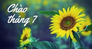 nhung bai tho ngan hay thang 7 khong nen bo qua 310x165 - Những bài thơ ngắn hay tháng 7 không nên bỏ qua