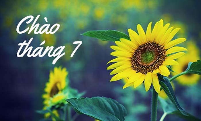 nhung bai tho ngan hay thang 7 khong nen bo qua - Những bài thơ ngắn hay tháng 7 không nên bỏ qua