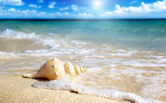 nhung bai tho ngan hay ve bien nhieu nguoi yeu thich - Những bài thơ ngắn hay về biển nhiều người yêu thích