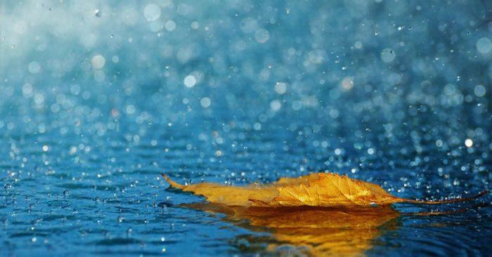nhung bai tho ngan hay ve mua an tuong nhat 2 - Những bài thơ ngắn hay về mưa ấn tượng nhất