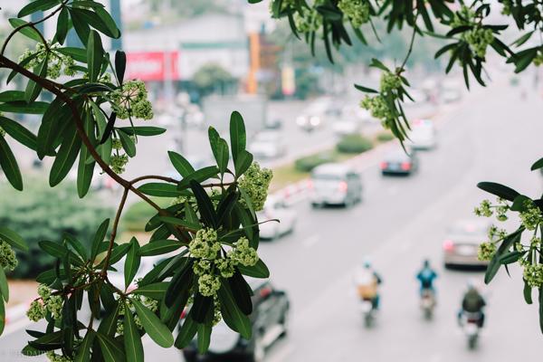 nhung bai tho ngan hay ve mua thu moi nhat - Những bài thơ ngắn hay về mùa thu mới nhất