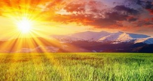 nhung bai tho ngan hay ve nang khong the khong doc 310x165 - Những bài thơ ngắn hay về nắng không thể không đọc