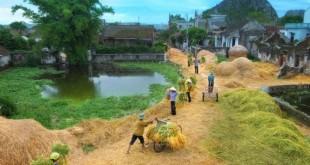nhung bai tho ngan hay ve que huong cam dong 310x165 - Những bài thơ ngắn hay về quê hương cảm động