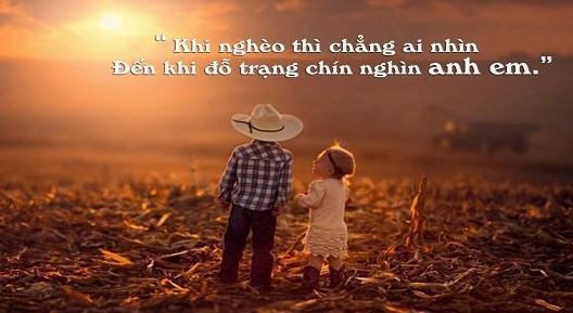 nhung bai tho ngan hay ve tinh anh em cam dong nhat - Những bài thơ ngắn hay về tình anh em cảm động nhất