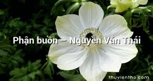 Phận buồn – Nguyễn Văn Thái
