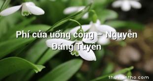 Phí của uổng công – Nguyễn Đăng Tuyên