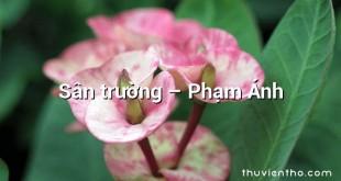 Sân trường – Phạm Ánh