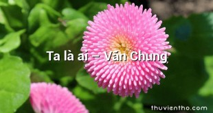 Ta là ai – Văn Chung