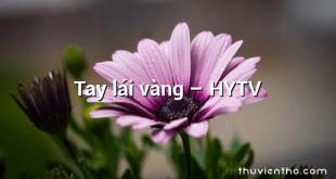 Tay lái vàng – HYTV