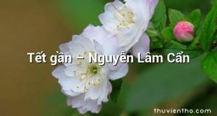 Tết gần – Nguyễn Lâm Cẩn