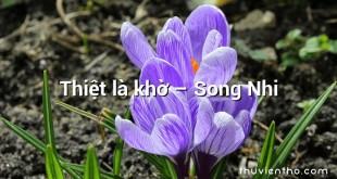 Thiệt là khờ – Song Nhi