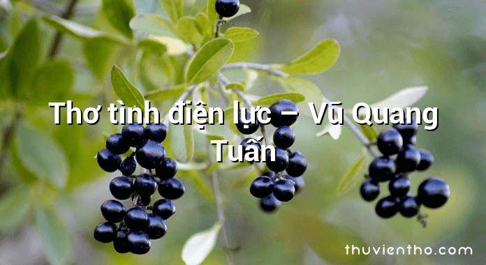 Thơ tình điện lực – Vũ Quang Tuấn