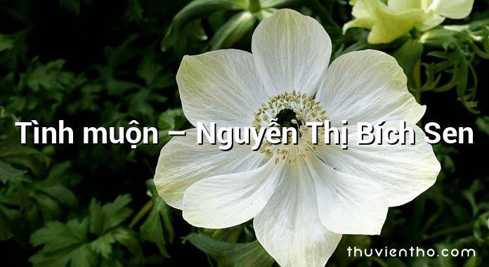 Tình muộn – Nguyễn Thị Bích Sen