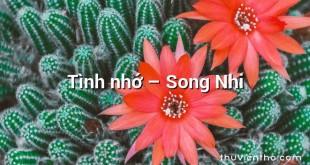 Tình nhớ – Song Nhi