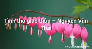 Tình thơ giao thừa – Nguyễn Văn Thái