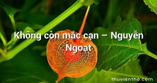Không còn mắc cạn – Nguyễn Ngoạt