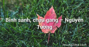 Bình sành, chậu gang – Nguyễn Tường