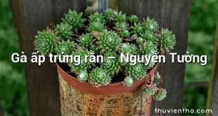 Gà ấp trứng rắn – Nguyễn Tường