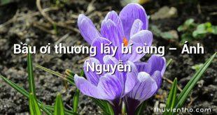 Bầu ơi thương lấy bí cùng – Ánh Nguyễn