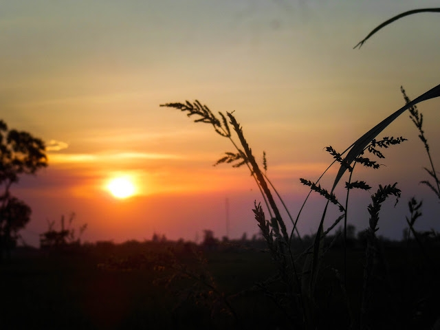 top 10 bai tho hay cua nha tho nguyen phong viet 10 - Top 10 Bài thơ hay của nhà thơ Nguyễn Phong Việt