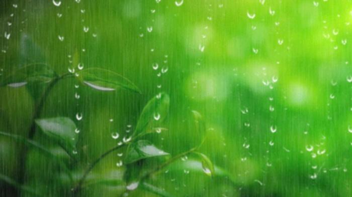 top 10 bai tho hay ve hien tuong thien nhien danh cho thieu nhi 4 - Top 10 Bài thơ hay về hiện tượng thiên nhiên dành cho Thiếu Nhi