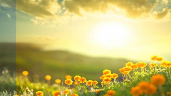 top 10 bai tho hay ve hien tuong thien nhien danh cho thieu nhi 7 - Top 10 Bài thơ hay về hiện tượng thiên nhiên dành cho Thiếu Nhi