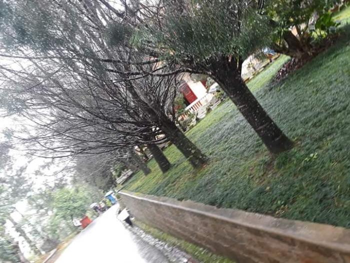 top 10 bai tho hay viet cho mua la rung 4 - Top 10 Bài thơ hay viết cho mùa lá rụng
