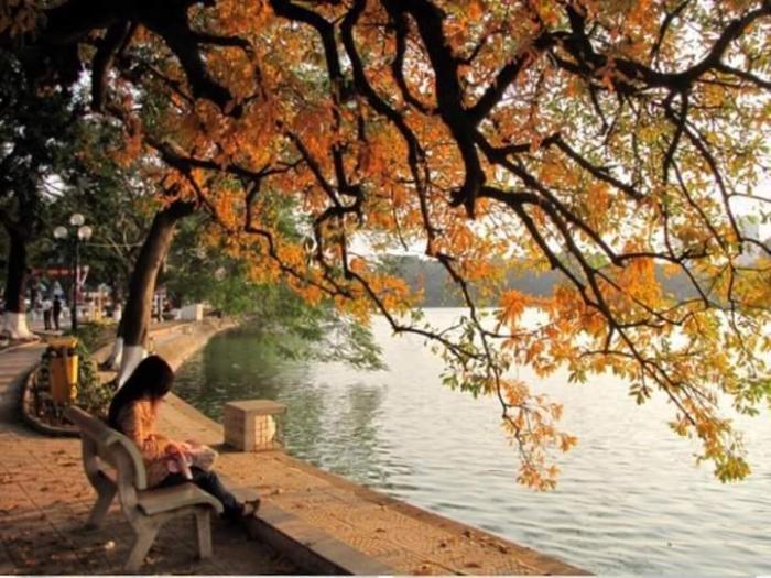 top 10 bai tho hay viet cho mua la rung 5 - Top 10 Bài thơ hay viết cho mùa lá rụng