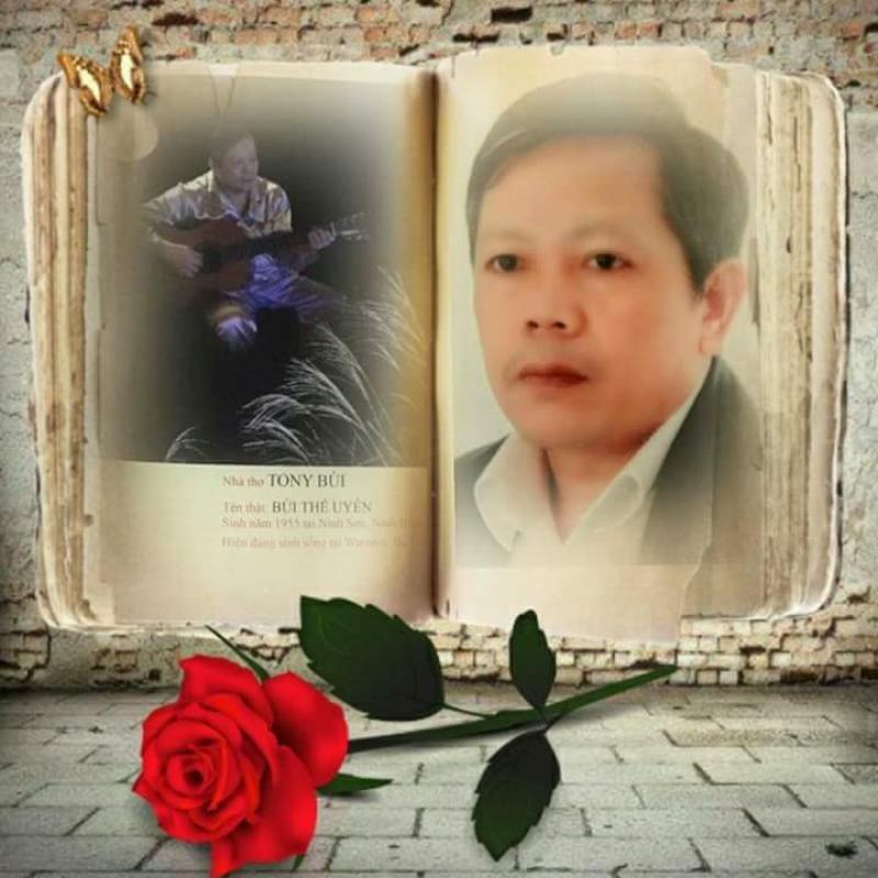 top 11 bai tho hay cua nha tho bui the uyen 1 - Top 11 Bài thơ hay của nhà thơ Bùi Thế Uyên