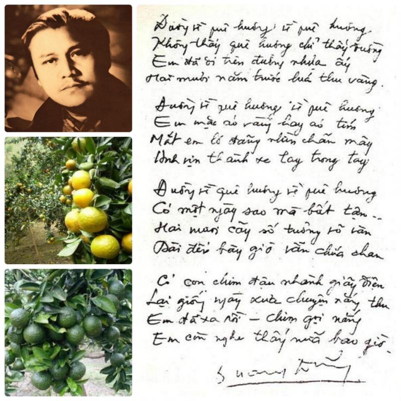 top 12 bai tho hay nhat cua nha tho quang dung 7 - Top 12 Bài thơ hay nhất của nhà thơ Quang Dũng