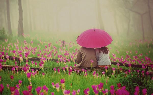 top 12 bai tho hay ve hoa hong 16 - Top 12 Bài thơ hay về hoa hồng